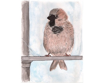 Sparrow sketch to frame, original ink and watercolour painting on paper, bird art, bird lover gift, nursery decor, art to frame