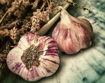 Garlic - Food Photo - Garlic Photo - Still Life Photo - Kitchen Photography - Square - Digital Photo - Digital Download - Dining Room Art