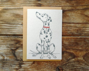Dog Note Cards: 10 Pack; Dalmation