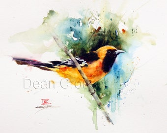 HOODED ORIOLE Watercolor Print by Dean Crouser