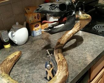 Dearragon Slayer- Gourd & Skull Art