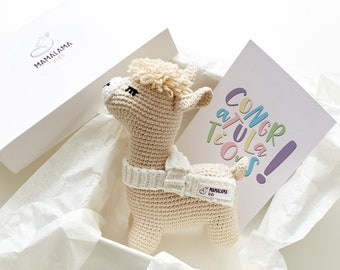 New mommy gift set Llama baby shower Gift for mom to be Crochet llama toy New parents gift Expecting mum gift Pregnancy gift mom Alpaca toy