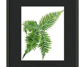 Watercolor botanical painting fern plant watercolor art nature original painting 24X32 cm Hahnemuhle 425g/ sq m Acid free Watercolor paper