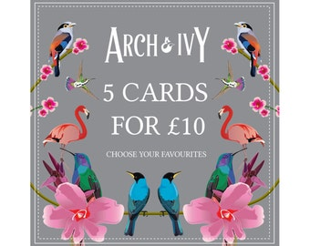 Card Offer - Pack of Cards - Mix & Match Cards - Card Bundle - Birthday Card - Thank You Card - Thinking of You Card - Congratulations Card