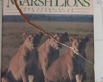 "The Marsh Lions   ""The Story of An African Pride"""
