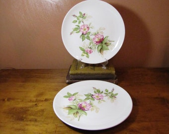 Vintage Glamour Dinner Plates in Briar Rose Pattern by The American Limoges Co.