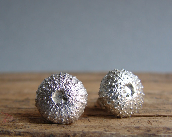Urchin Stud Earrings Jewerly- Organic - Nature Inspired - Beach -  Shell Jewelry