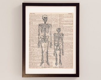 Vintage Skeleton Print - Anatomy Art - Print on Vintage Dictionary Paper - Doctor Gift - Medical School - Human Skeleton - Chimp Skeleton