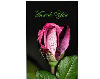 Thank You Greeting Card Pink Rosebud Half-Fold Photo by Melsart21 Photography Creations