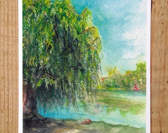 Willow Tree Postcard / Toronto Art / Toronto Themed Postcards / Watercolor Postcard /  Willow Tree at Toogood Pond Park