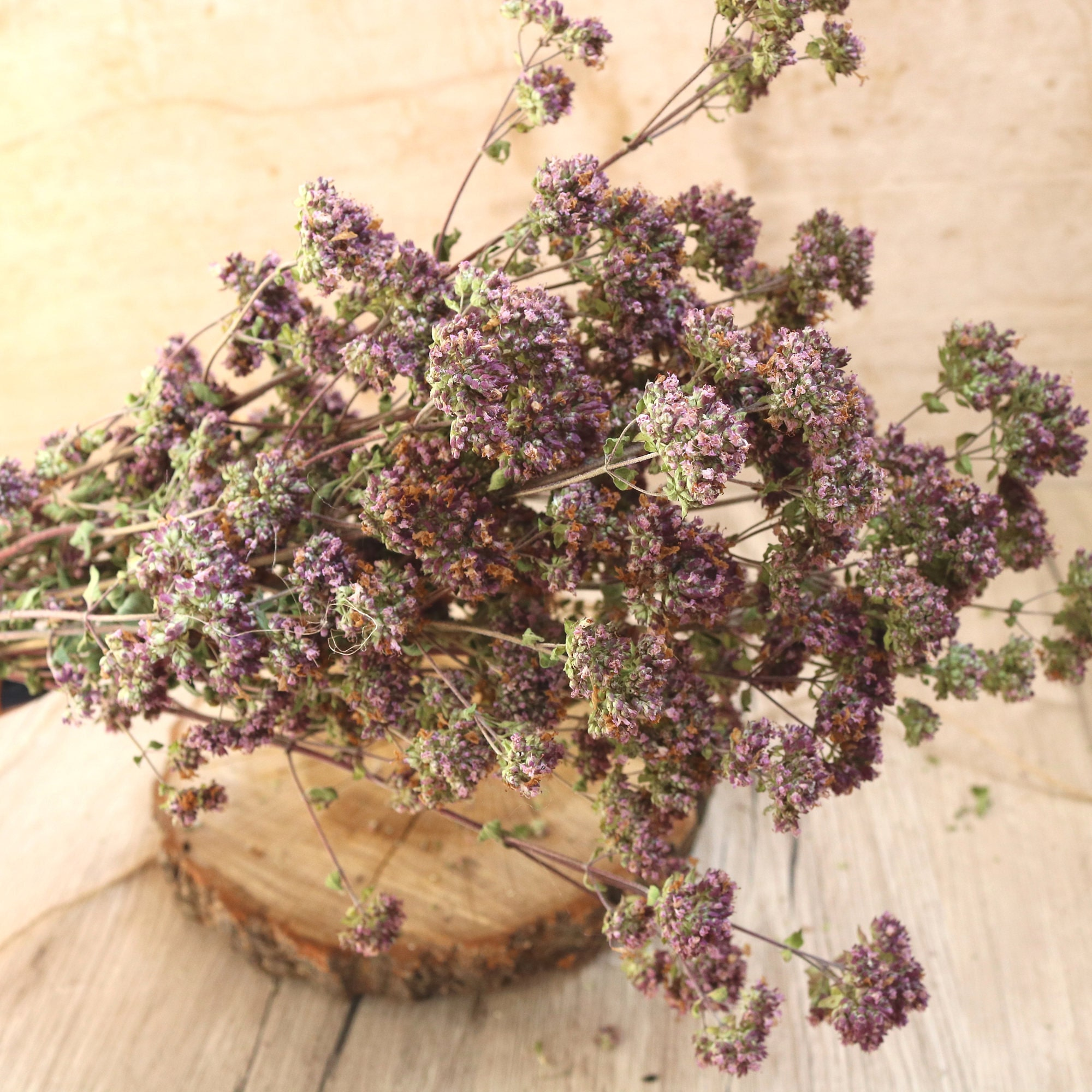 Dried oregano dried flowers wild flowes wildflowers dried sold by collectinspiration izmirmasajfo Images