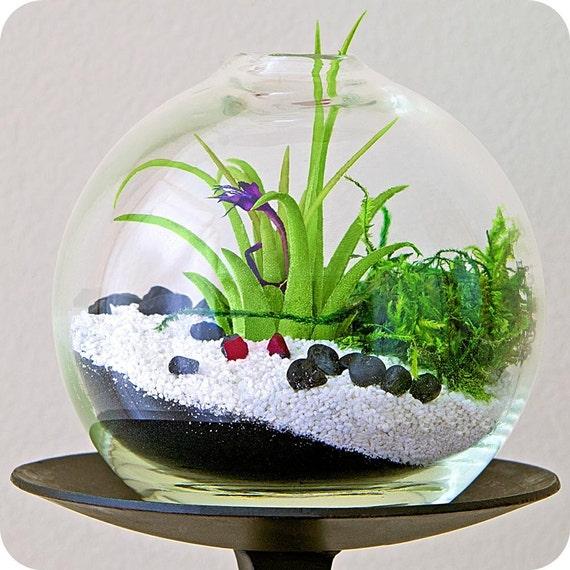 Enchanted forest terrarium etsy ny terrarium zen garden - Terrarium decoration miniature ...