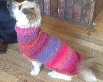Aurora Knit Dog Sweater