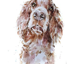 "Red Setter"" Print Watercolour A3 (30*40cm/16*12 Inches)"