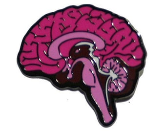 Medial view brain pin