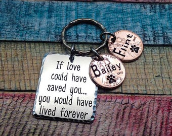 Pet Memorial Keychain, Loss of family dog, Pet loss Key chain, Engraved penny key ring, Custom Pet Loss Gift, Dog Memorial, Cat memorial
