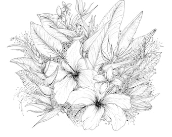 Birds of Paradise - Black and white