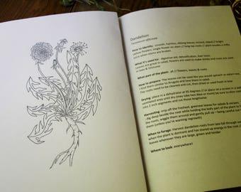 Herbalist Zine // wild craft, harvesting, Foraging for Wild plants //  DIGITAL FILE