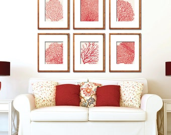 Underwater Sea Coral Collection (Series D) Set of 6 - Art Prints - Featured in Featured in Ruby Red and Soft Cream