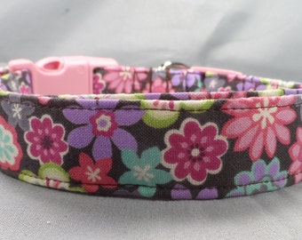 Bright Little Flowers on Brown Dog Collar