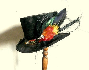 antique french paris top hat with taxidermy bird