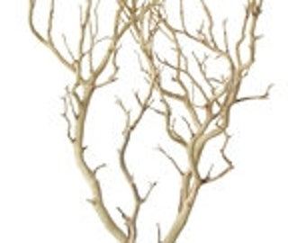 Sandblasted Manzanita Branches - 30 inches tall, 8 pieces