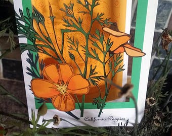 California Poppy (papercut trifold)