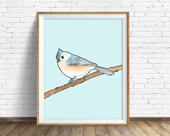 Tufted Titmouse - bird, drawing, watercolor, yellow, blue, art print, wall art print, large wall art, animal art print, woodland wall art