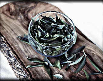 Olive branch, Olive Leaves dried from our groves, organic, handpicked olive leaf, natural leaf tea, a breeze from the groves, olive magic