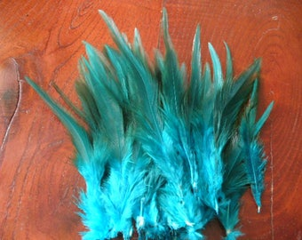 1 sky blue Rooster feather