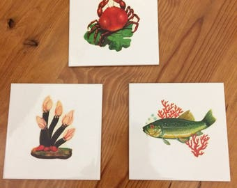 Set of 3 kitsch white tiles with vintage 60s 70s decals kitchen food seafood imagery