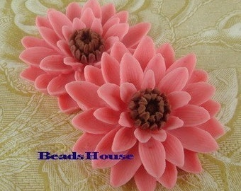 652-02-100-CA   2 Pcs Pretty Classic Big Chrysanthemum Cabochons - Sachet Pink W/Brown.