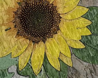 Digital Sunflower photograph with modern edit