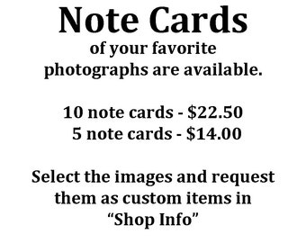 Note Cards,  Pick the Yellowstone images you want