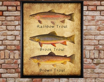 Trout Poster - Fish Print - Rainbow Brook Brown - Rainbow Trout - Fishing Poster Wall Art Decor Man Cave #vi248