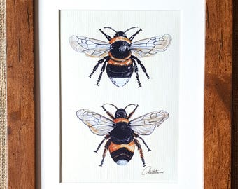 Bumblebee Wall Art Bumblebee Print Framed Bumblebee Illustration Bumblebees Framed Bumblebee Painting Bee Picture - The perfect bee gift