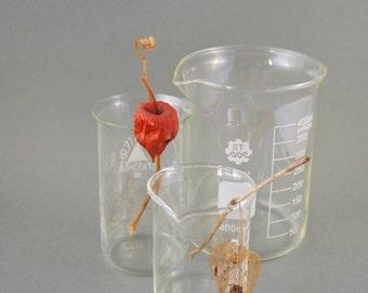 Laboratory Beakers, Vintage Glassware, Graduated Glass Beaker, Set of 3, Lab Glass, Scientific Flask, Medical Glass, Laboratory Ware
