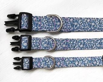 Lavender Field's Dog Collar