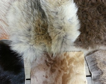 Classroom Collection of Fur Pieces - 6 Species - Touch and Feel