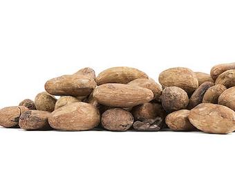 Organic CACAO Beans WHOLE Raw Theobroma cacao Multiple Sizes