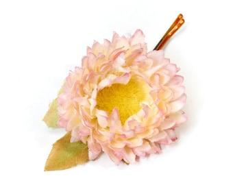 Bloom, Flower, Bobby Pin