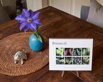 Botanical Greeting Card Set -- Blank Inside -- Flower Greeting Card -- Just Because Greeting Card -- Gardener Gift
