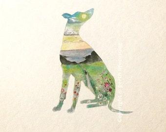 Greyhound Meadow