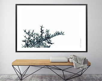 Minimalist poster Large wall art, Large Canvas Print, black and white print 40X60, modern tree print, nature prints bedroom art by Duealberi