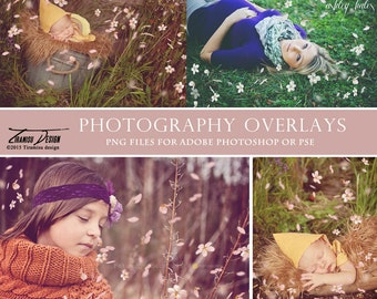 Spring Petals Photo Overlays, Blossom Photo Overlays, INSTANT DOWNLOAD