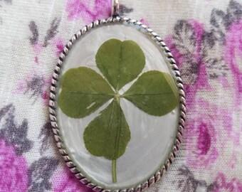 Real Four Leaf Clover Pendant #16