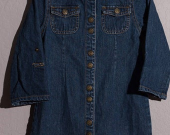 Vintage Jeanie Bleu Dress, 1990's Denim Snap Front Dress