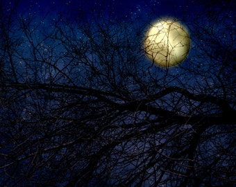 Moon Photography - Royal Blue Photo - Full Moon Photograph - Square Photo - Wall Print - Gothic Photography - Sky Photography - Dorm Photo