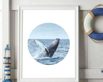 Whale Print, Whale Art, Coastal Decor, Whale Printable, Ocean Photography, Beach Print, Circle Tropical Decor, Downloadable Whale Decor
