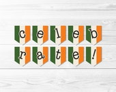 Irish Flag Celebrate Banner -- St Patrick's Day Banner, Ireland Flag Banner, Celebration Banner, Party Banner, Printable, Instant Download